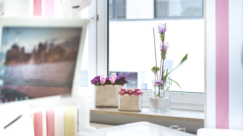 Zahnarzt Dr. Ekkehard Schmidt - Behandlung Eins mir Blumen